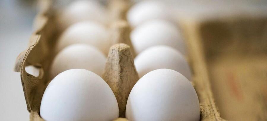 Meget tyder på, at det insektmiddel, der er fundet i store mængder forurenede æg, kan være hormonforstyrrende, fremhæver forskere fra Rigshospitalet.