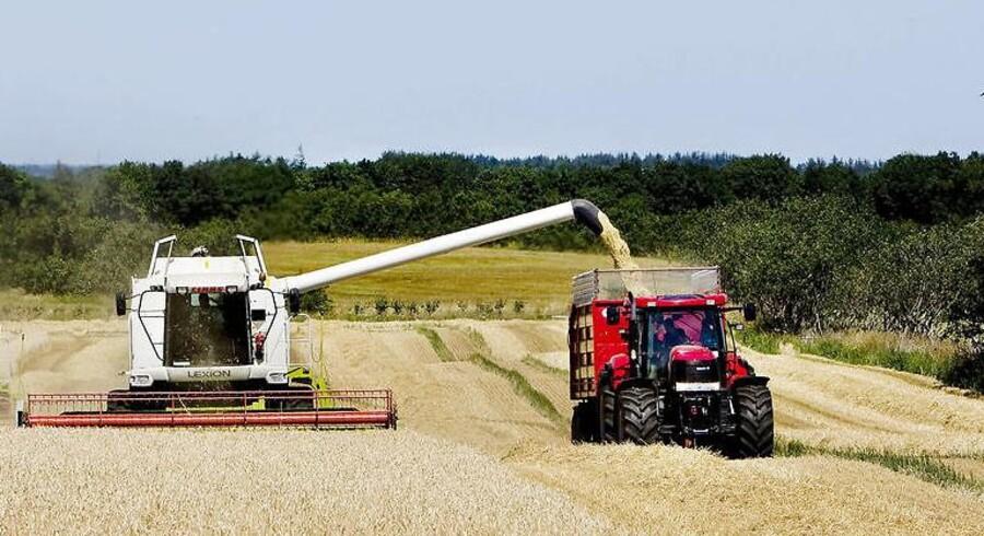Årets høst er i store dele af landet hårdt ramt af dårligt vejr og skadedyr. Derfor er udbytterne betydeligt under det normale niveau.