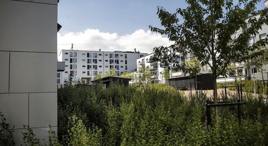 Nordsjællands Politi efterforsker en række voldtægtssager af piger helt ned til 13-årsalderen. Ifølge sigtelserne skulle flere af overgrebene have fundet sted i området omkring Holmegårdsvej i Kokkedal.