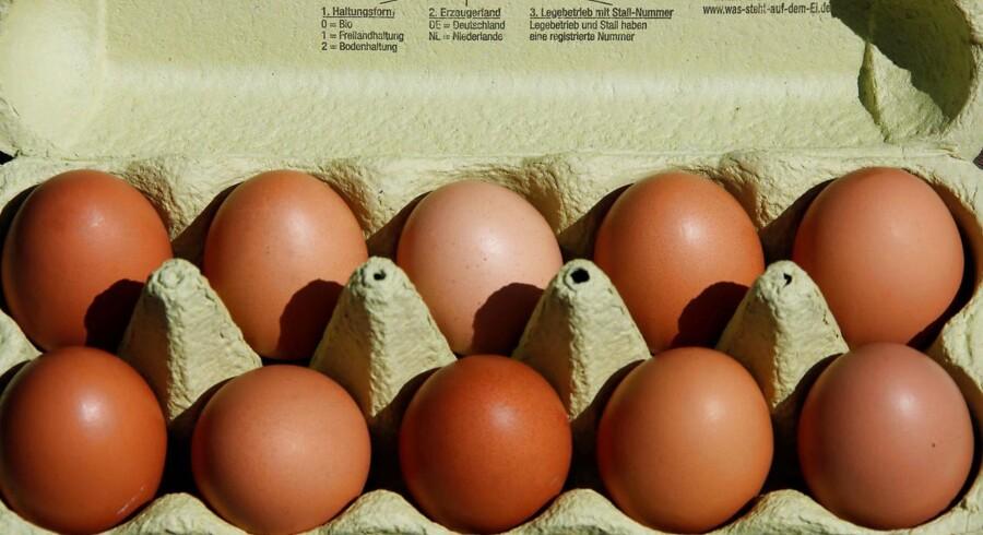 Et insektmiddel, der er skadeligt for mennesker, er fundet i millioner af æg i Europa og Hongkong. REUTERS/Wolfgang Rattay/Illustration Photo