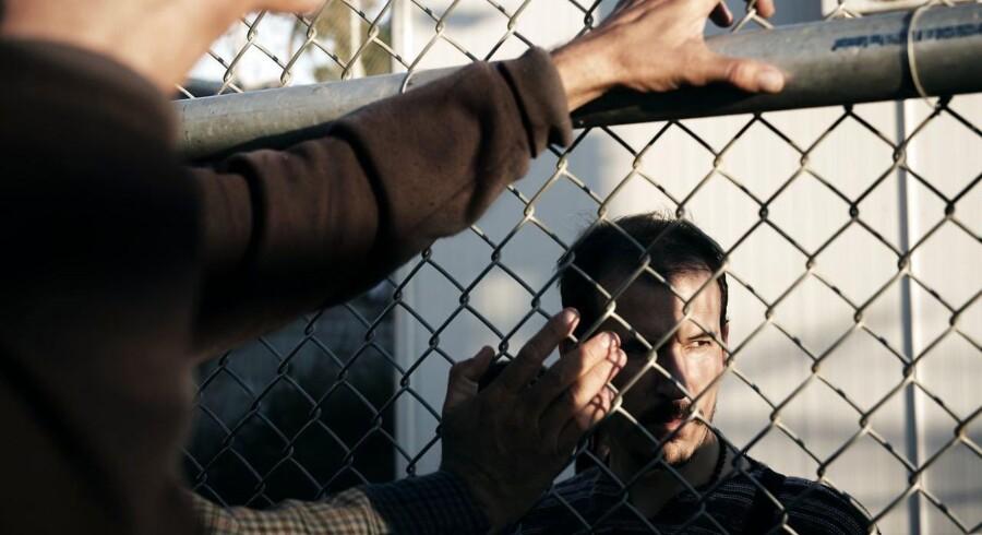 Ifølge Citis cheføkonom, Willem Buiter, vil nye millioner af flygtninge- og immigranter snart stævne ud på deres rejse mod Europas kyster.