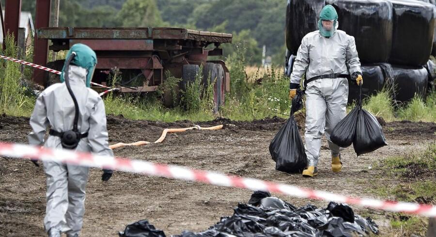 ARKIVFOTO. Fødevarestyrelsen strammer regler for dem, der holder høns og andet fjerkræ efter spredning af fugleinfluenza.