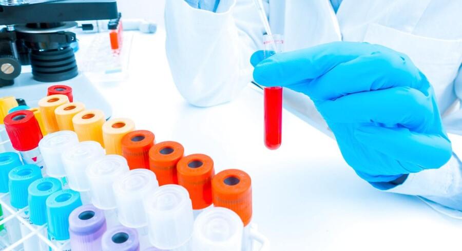 Der er fart på aktien i det danske biotekselskab Zealand Pharma, efter at selskabet torsdag har fået godkendt sit første diabetesmiddel til salg på det amerikanske marked. Foto: Iris.