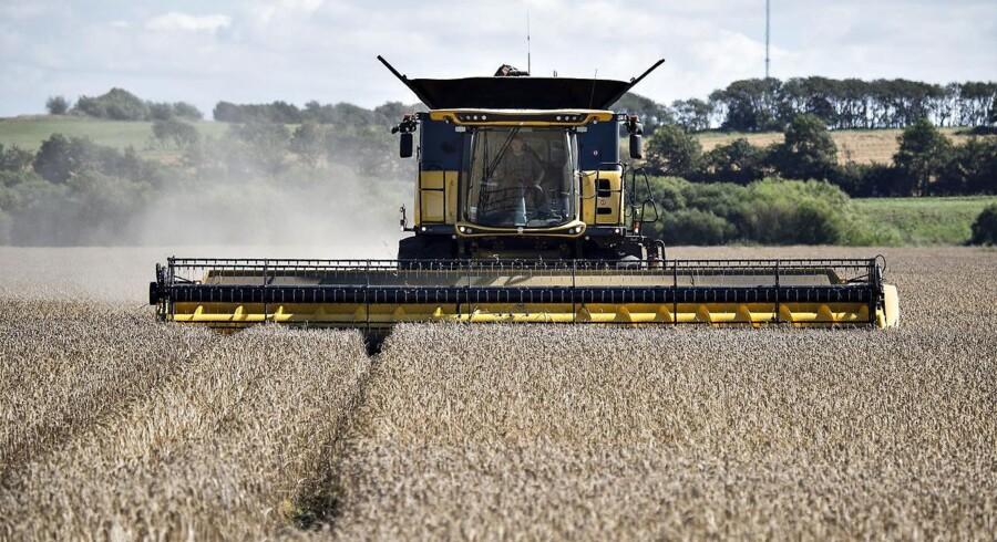 Lave renter gør gældsbyrden for de danske landmænd mindre uoverskuelig.