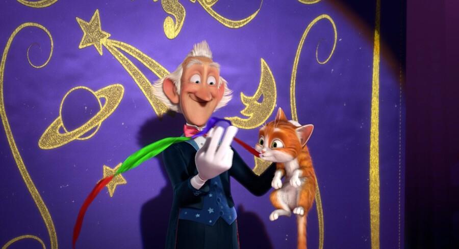 Filmens hovedperson: En lille herreløs kat der får navnet Torden. Foto: PR