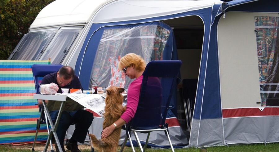 Hvis du rejser på eksempelvis campingferie i EU med en hund eller kat, skal dyret være id-mærket, have en gyldig rabiesvaccine og være i besiddelse af et EU-selskabsdyrspas. Torben Christensen/Ritzau Scanpix