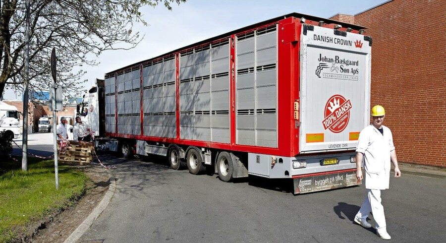 Danish Crown slagteriet i Herning blev onsdag lukket på grund af mistanke om svinepest.