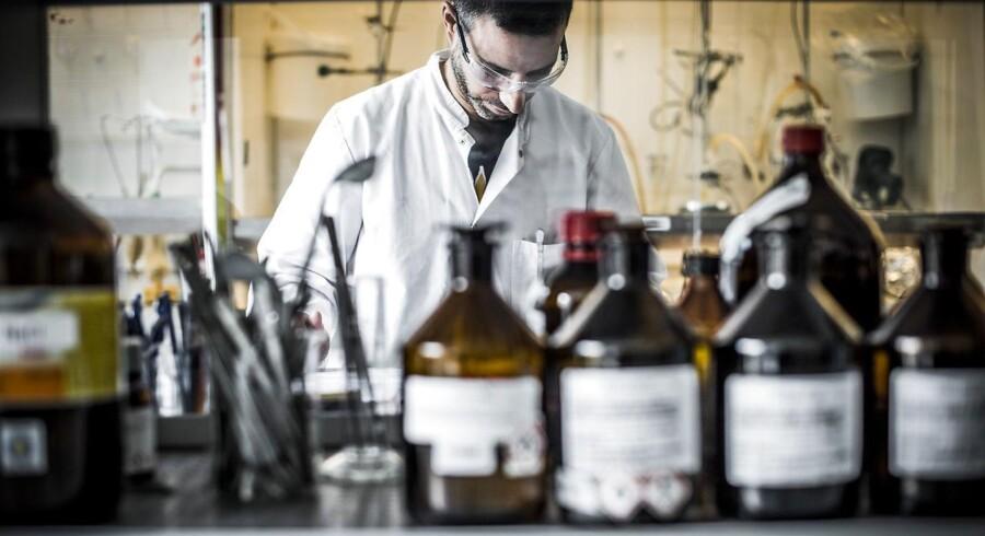 Forsker Paulo Vital fra Portugal udøver kemiske forsøg og arbejder med molekyler i det helt tidligere stadier hos Lundbeck i Valby, som netop har kastet sig ind i milliard-samarbejde med andre medicinalgiganter om at bekæmpe Alzheimers.