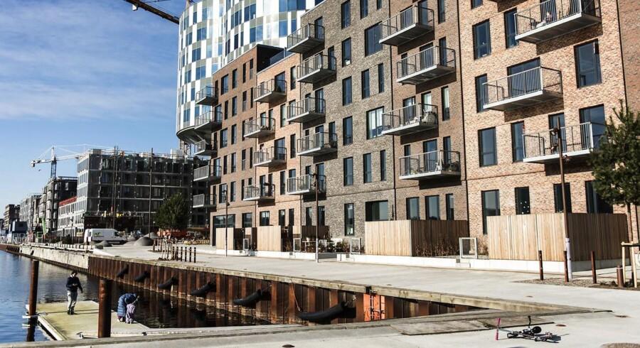 Det vrimler frem med nye bydele i København. Blandt andet i Nordhavn, hvor nyt byggeri skyder op overalt. Mandag den 15. februar 2016.