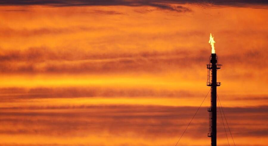 OPEC-landene fastholder den høje produktion til trods for den drastisk faldende oliepris.