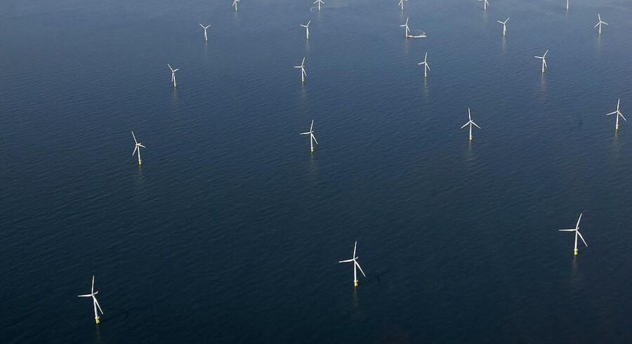 MHI Vestas ses som en oplagt leverandør af de vindmøller, som Dong Energy skal bruge til at opføre de to hollandske havvindmølleparker Borssele I og II. Hverken Dong eller MHI Vestas vil kommentere rygterne overfor Recharge News.
