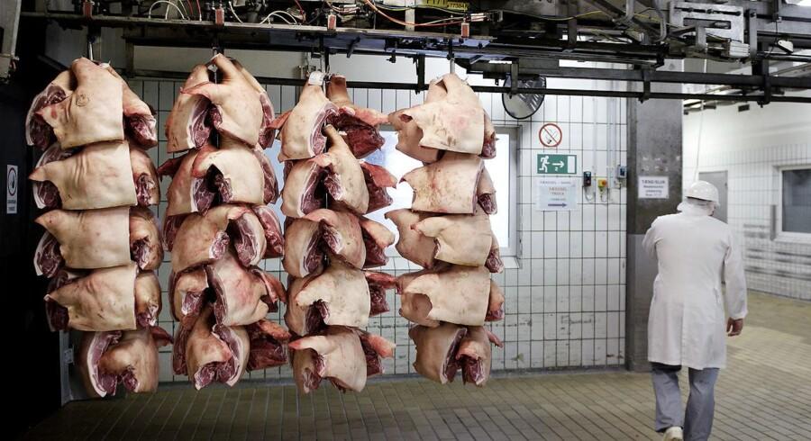 Der er igen fuld tryk på de otte Danish Crown-slagterier, der onsdag var ramt af strejke i Fødevarestyrelsen. (Foto: LISELOTTE SABROE/Scanpix 2014)