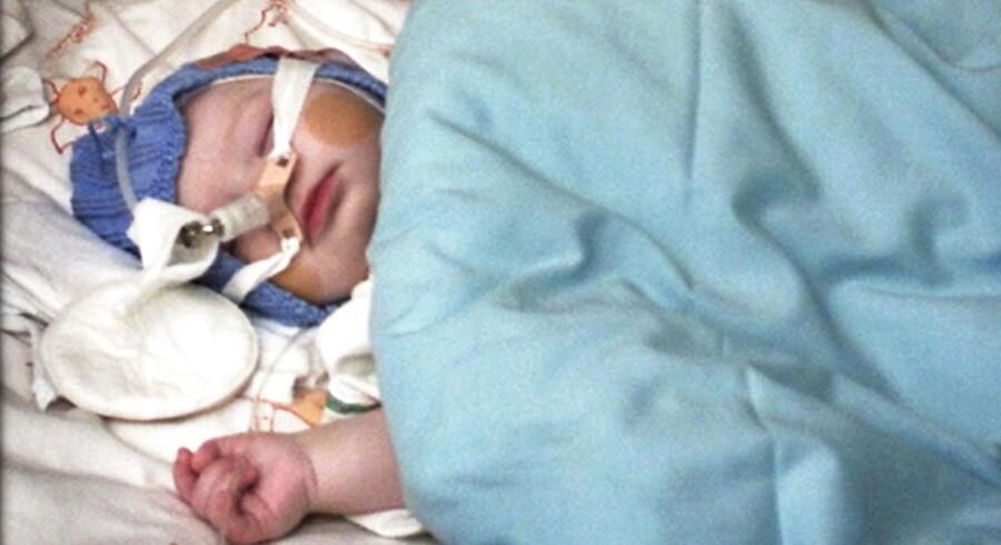 Når spædbørn indlægges med astmatisk bronkitis skyldes det oftest RS-virus, som slår hårdest til i vintermånederne.