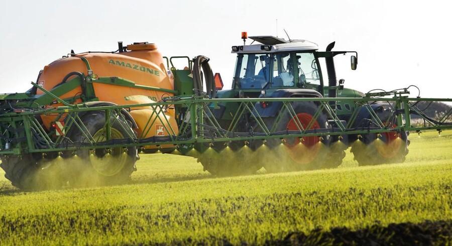 Grøntsager med rester af sprøjtegift er tredoblet på fem år. Landmænd forsikrer, at de sprøjter forsvarligt. (Foto: Steffen Ortmann/Scanpix 2013)