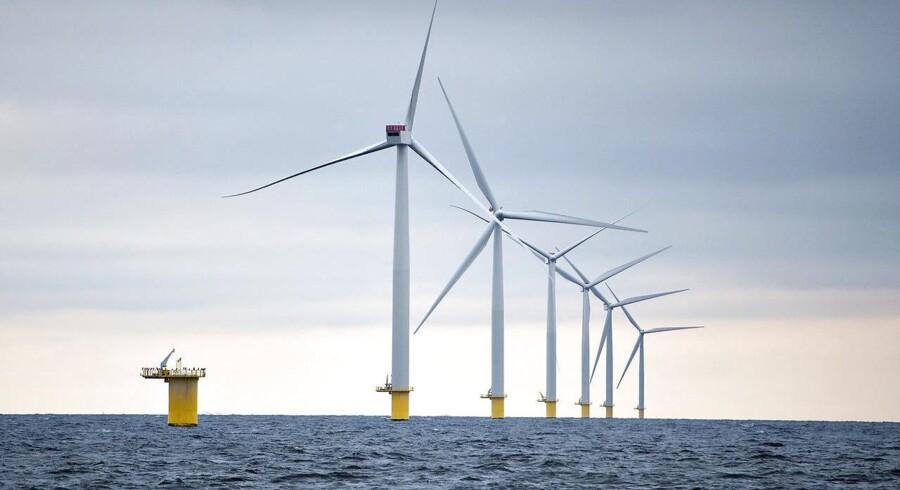 Dong skal opføre de to vindmølleparker inden for fire år. Havvindmølleparkerne vil blive placeret 22 kilometer fra kysten i den hollandske provins Zeeland. (Foto: Henning Bagger)