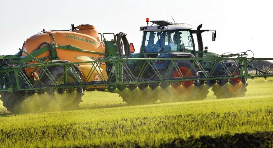 En ny højesteretsdom deler omkring 2.000 økonomisk plagede landmænd op i vindere og tabere. (Foto: Steffen Ortman)