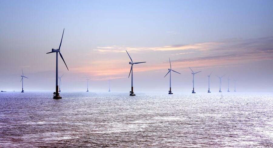 Organisationen Vindmølleindustrien kalder det dybt ærgerligt, at Hofor ikke vil byde på stor havvindmøllepark.