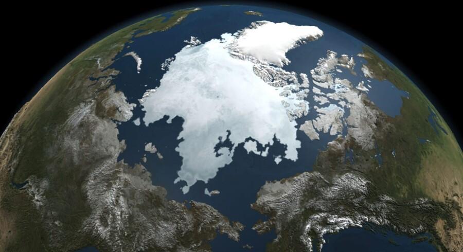 Det støt stigende globale havniveau er en af de vigtigste indikatorer på global opvarmning. Havene har aldrig været varmere end nu, hvilket er særligt bekymrende i og med, at omtrent 95 procent af Jordens overskudsvarme lagrer sig i den øvre del af havet. Arkivfoto: AFP/NASA