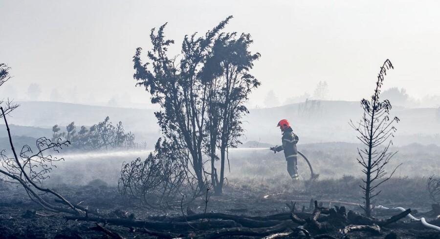 (ARKIV) En voldsom brand hærgede Frederikshåb Plantage og Randbøl Hede mellem Vejle og Billund, fredag den 25. maj 2018. Der har i juni været dobbelt så mange brande i naturen i Danmark som i de foregående fem år. Der er risiko for, at den overtændte bygning kan starte andre brande i den tørre, omkringliggende natur (Foto: Michael Drost-Hansen/Ritzau Scanpix)