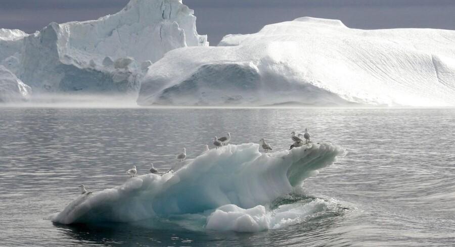 Udsigt fra lulissat, hvor de fem arktiske kyststater for ti år siden nåede til enighed om et fredeligt samarbejde.