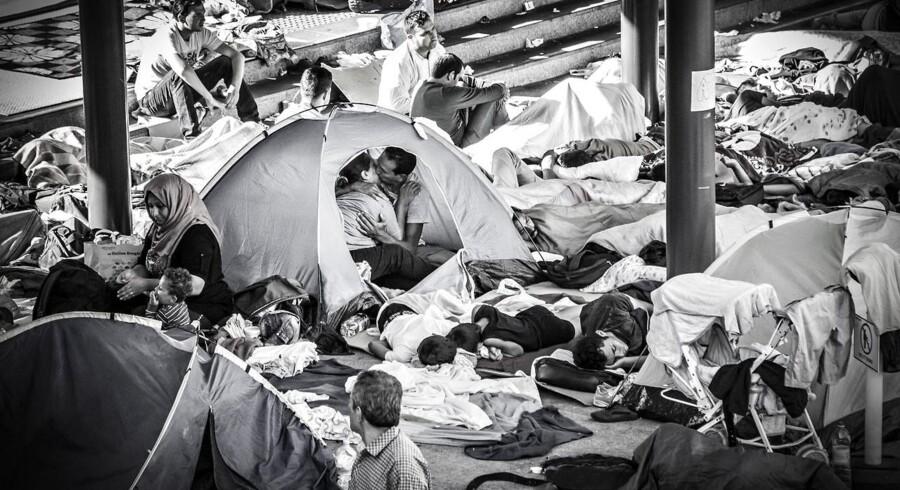 Et ungt par, der kysser hinanden i et telt på Keleti togstationen i Budapest i Ungarn, går i øjeblikket verden rundt. Billedet er blevet et symbol på håbet, som flygtningene har om at komme til et sted, hvor de kan leve trygt.