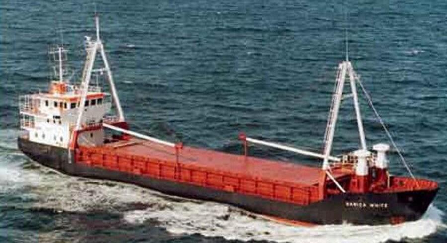 Stadig mere varetransport kloden rundt betyder, at uønskede arter via fragtskibenes ballastvand skaber store problemer for naturen andre steder. Scanpix.