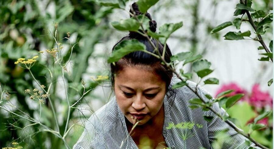 Anh Lê i sin urtehave på Frederiksberg. Arbejdet med planter gav hende ro og overskud igen. Foto: Columbus Leth fra bogen »LêLês Urtekøkken«.