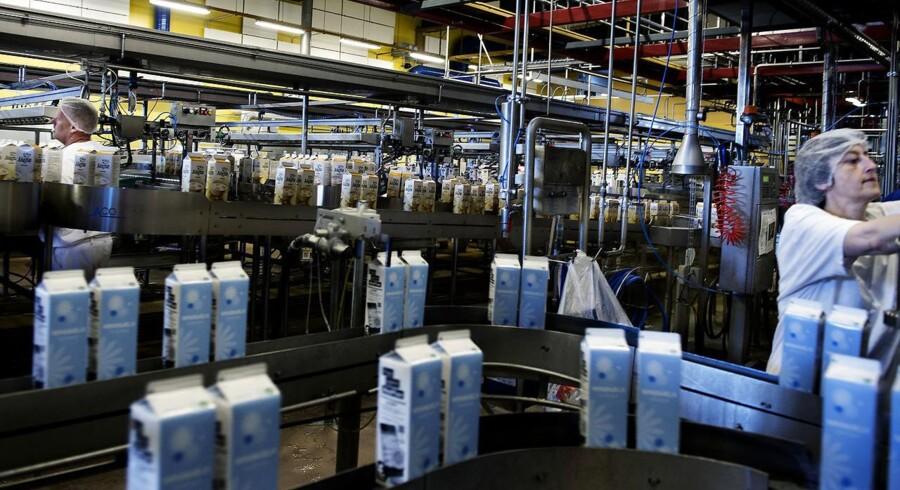 »Uge for uge modtager vi nu større mængder mælk i Danmark end nogensinde før, og vi venter, at væksten fortsætter de kommende år,« fortæller Thomas Carstensen, direktør for råvarehandel hos Arla.