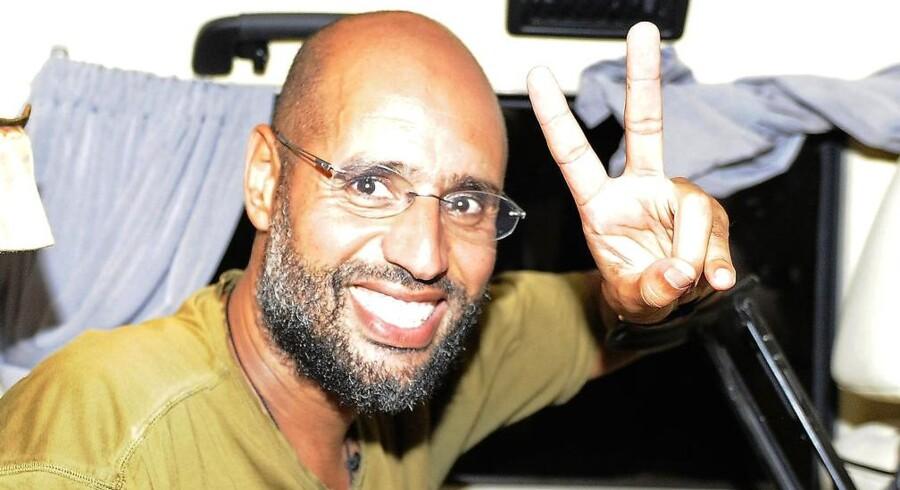 Saif al-Islam vil overgive sig, skriver internationale bureauer.