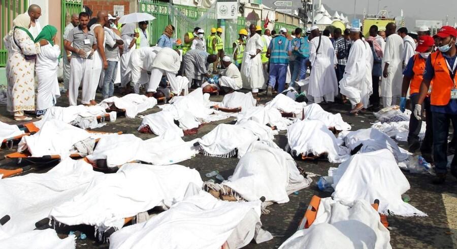 Mindst 717 mennesker mistede torsdag livet under muslimernes årlige pilgrimsfærd til Mekka. De blev højst sandsynligt trampet ihjel. Over 800 blev kvæstede.