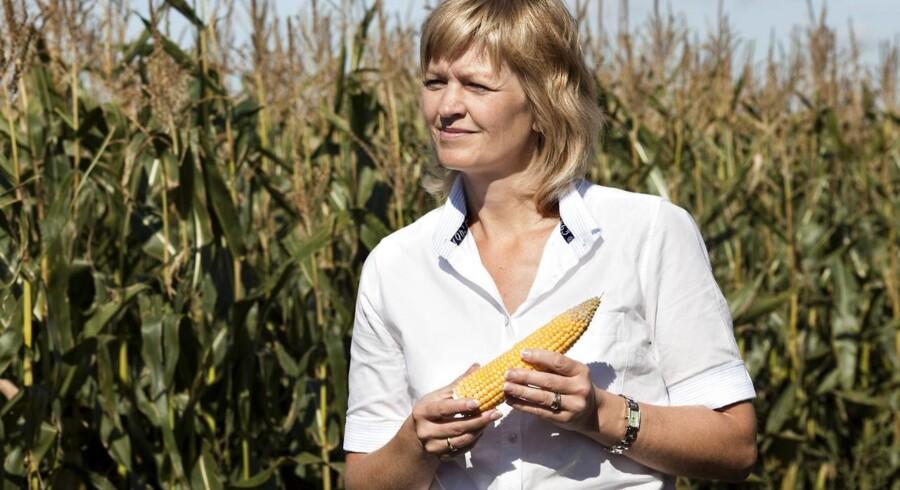 Et flertal af danskerne tvivler på, at miljø- og fødevareminister Eva Kjer Hansen (V) har givet offentligheden et retvisende billede af Landbrugspakkens miljømæssige konsekvenser, viser en ny Gallup-måling for Berlingske. Arkivfoto: Jens Nørgaard Larsen
