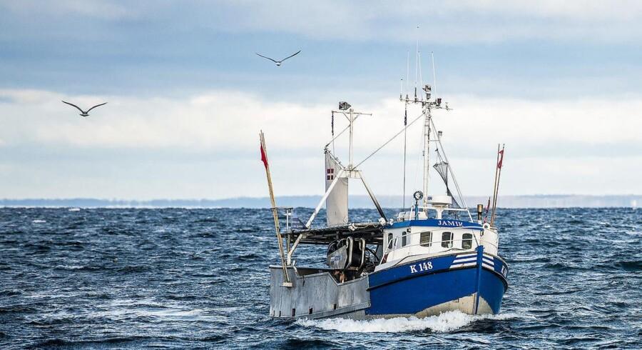 Siden 1964 har fem lande haft lov til at fiske tæt på de britiske kyster. Nu vil briterne forlade aftalen. Arkivfoto.