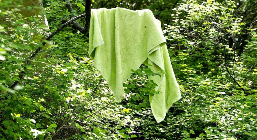 København er under besættelse af romaer, mener Venstres Marcus Knuth. Her ses et håndklæde ved søen i Ørstedsparken, hvor mange romaer holder til.