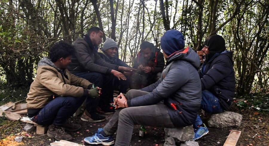 Ikke mindst flygtningene og migranterne i lejren kaldet »junglen« uden for byen Calais fylder en del i den franske debat om udlændingepolitikken./ AFP PHOTO / PHILIPPE HUGUEN