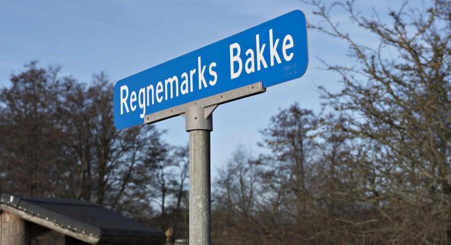 Vidnet så en parkeret bil ved Regnemarks Bakke på dagen, hvor Emilie Meng døde.