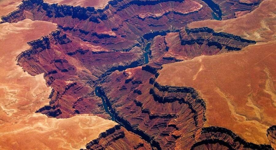 I maj sagsøgte geologen Andrew Snelling det amerikanske indenrigsministerium, fordi det havde afslået hans anmodning om at tage 50 til 60 sten på størrelse med en knytnæve for at forsøge at dokumentere eksistensen af den bibelske syndflod.