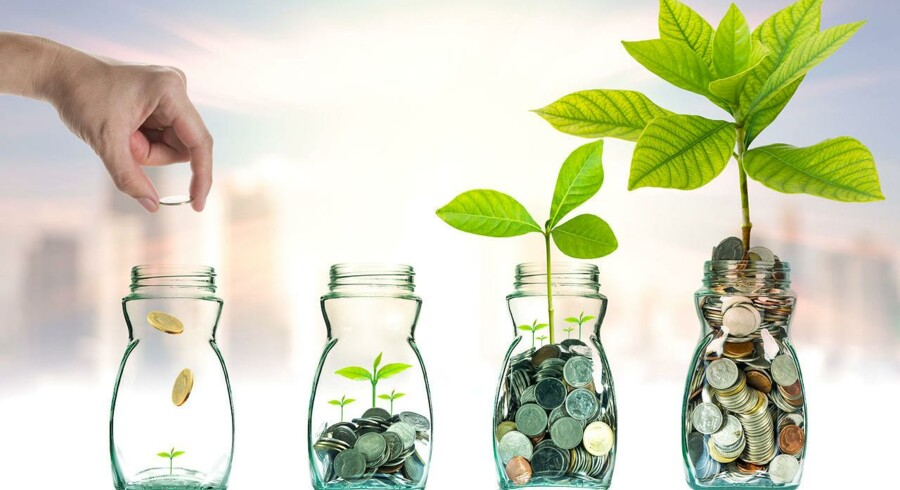 Morningstars chefanalytiker har kigget nærmere på, hvilke danske investeringsforeninger der har klaret sig bedst, og det er tre velkendte størrelser, som topper.