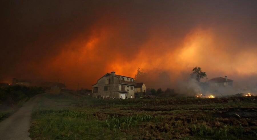 En skovbrand nær hjem i Chandebrtito, Spanien den 15. oktober 2017. Orkanen Ophelia har pustet yderligere liv i de voldsomme brande.