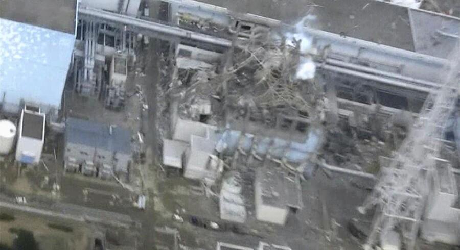 Torsdag fløj en helikopter ind over det forkrøblede Fukushima-værk. Billedet viserReaktor 3, som blev rystet af en eksplosion mandag.