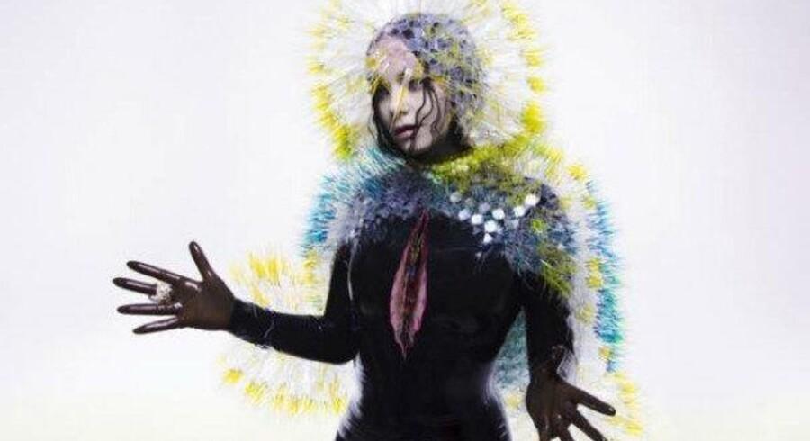 Björk: »Vulnicura«