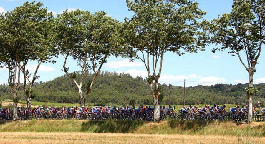Verdens nok berømteste cykelløb trækker seere - også på nettet ... og i arbejdstiden. Foto: Ian Langsdon, EPA/Scanpix