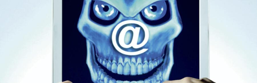Internationale svindlere opererer på internet, hvor de efterligner officielle domænenavne, som man rammer, hvis man taster lidt forkert. Dermed sikrer de sig adgang til følsomme oplysninger på ens computer. Derfor er det vigtigt at opdatere antivirusprogram og firewall.