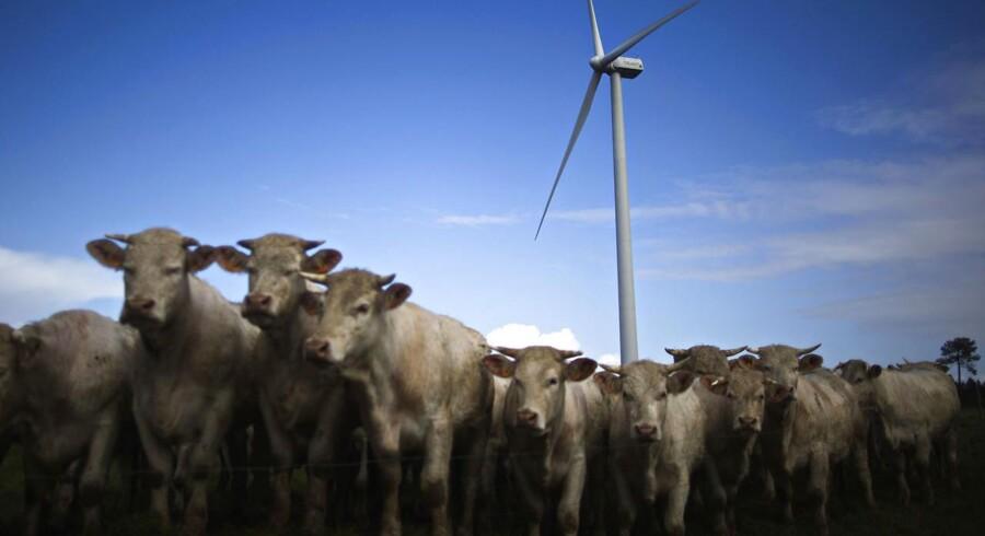 Amerikanske General Electric sælger ikke nær så mange vindmøller som hidtil.