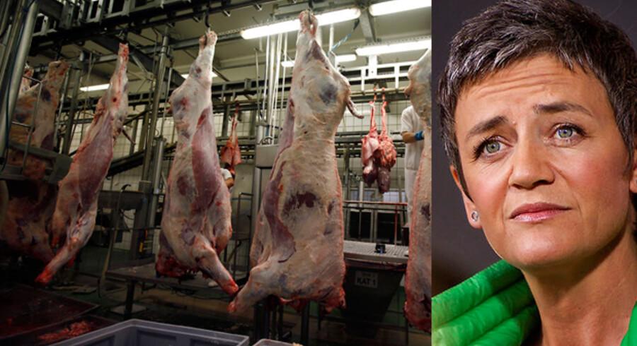 Margrethe Vestager er ikke enig med sin statsminister om at halalslagtet kød skal mærkes.