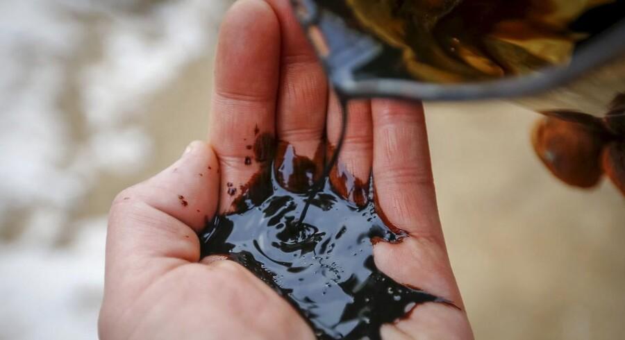 Energiagenturet forudser, at 4,1 mio. tønder olie om dagen vil blive føjet til den globale olieforsyning mellem 2015 og 2021.
