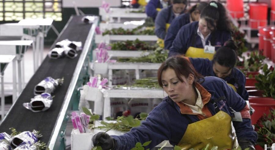 Flere og flere amerikanere kommer i arbejde.