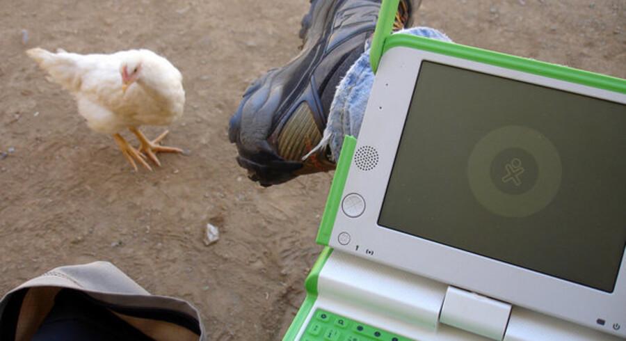 Den grøn-hvide XO-PC med de små ører (nemlig antenner) vinder større udbredelse. Foto: Flickr-gruppen om OLPC