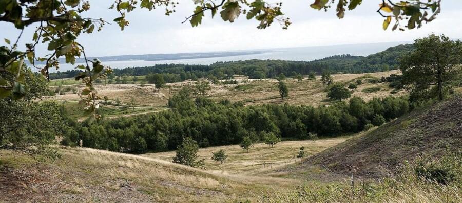 Arkivfoto fra Nationalpark Mols Bjerge.