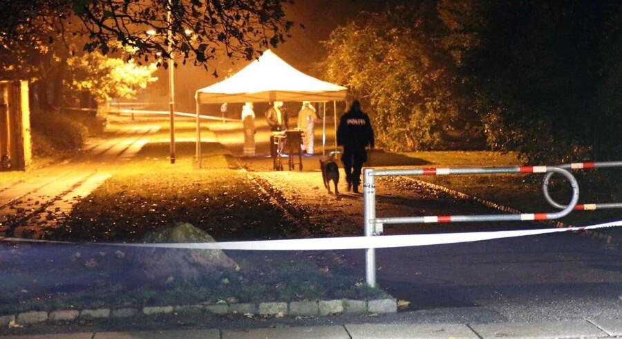 Politiet arbejder ved Elverparken i Herlev hvor en kvinde er fundet dræbt af knivstik fredag d. 4 november 2016. (Foto: Mathias Øgendal/Scanpix 2016)