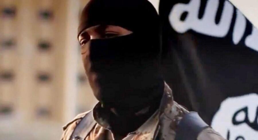 Krigen mod Islamisk Stat går langsomt i den rigtige retning, vurderer militærekspert. Arkivfoto.